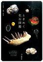 ときめく化石図鑑 [ 土屋香 ]