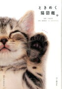 ときめく猫図鑑