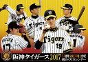 【卓上】阪神タイガース 週めくり 2017年 カレンダー