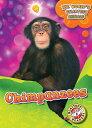 Chimpanzees CHIMPANZEES (World's Smartest Animals)