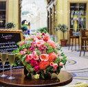 【壁掛】『花時間』2017 Calendar パリの花・パリの街