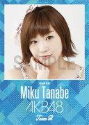 (卓上) 田名部生来 2016 AKB48 カレンダー