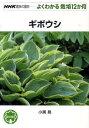 ギボウシ (NHK趣味の園芸ーよくわかる栽培12か月)
