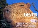 カピバラ [ 渡辺克仁 ]