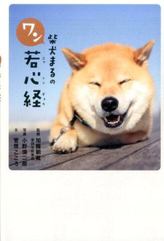 柴犬まるのワン若心経 [ 小野慎二郎 ]