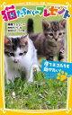 猫たちからのプレゼント(捨てネコたちを助けたい!) (集英社みらい文庫) [ 高橋うらら ]