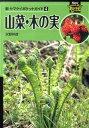 山菜・木の実 (新ヤマケイポケットガイド) [ 水野仲彦 ]