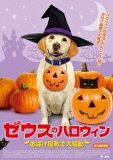 【DVD】ゼウスのハロウィン おばけ屋敷で大騒動
