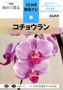 コチョウラン (NHK趣味の園芸12か月栽培ナビ) 富山昌克