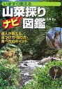 山菜採りナビ図鑑 いますぐ使える (012 outdoor) [ 大海淳 ]