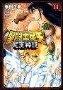 聖闘士星矢NEXT DIMENSION冥王神話(11) (少...