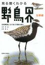 見る聞くわかる野鳥界(生態編) 生息環境とわけあり行動の進化 [ 石塚徹 ]