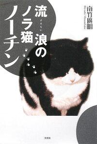 楽天ブックス 書籍通販 流浪(さすらい)のノラ猫ノーチン