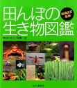 田んぼの生き物図鑑増補改訂新版 [ 内山りゅう ]