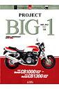 PROJECT BIG-1 20th ANNIVERSARY (ヤエスメディアムック)