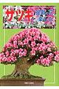 サツキ 盆栽と花を楽しむ (別冊さつき研究)