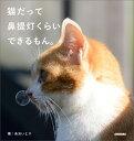 猫だって鼻提灯くらいできるもん。 [ あおいとり ]