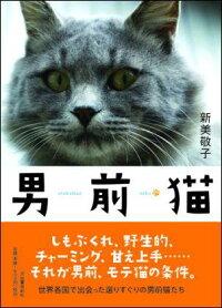 犬猫写真家、新美敬子の最新作は男前猫写真集通販
