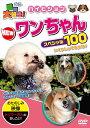 動物大好き!NEWワンちゃんスペシャル100 [ (キッズ) ]
