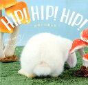 HIP!HIP!HIP! かわいいおしり [ 蜂巣文香 ]