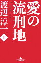 愛の流刑地(上) (幻冬舎文庫) [ 渡辺淳一 ]