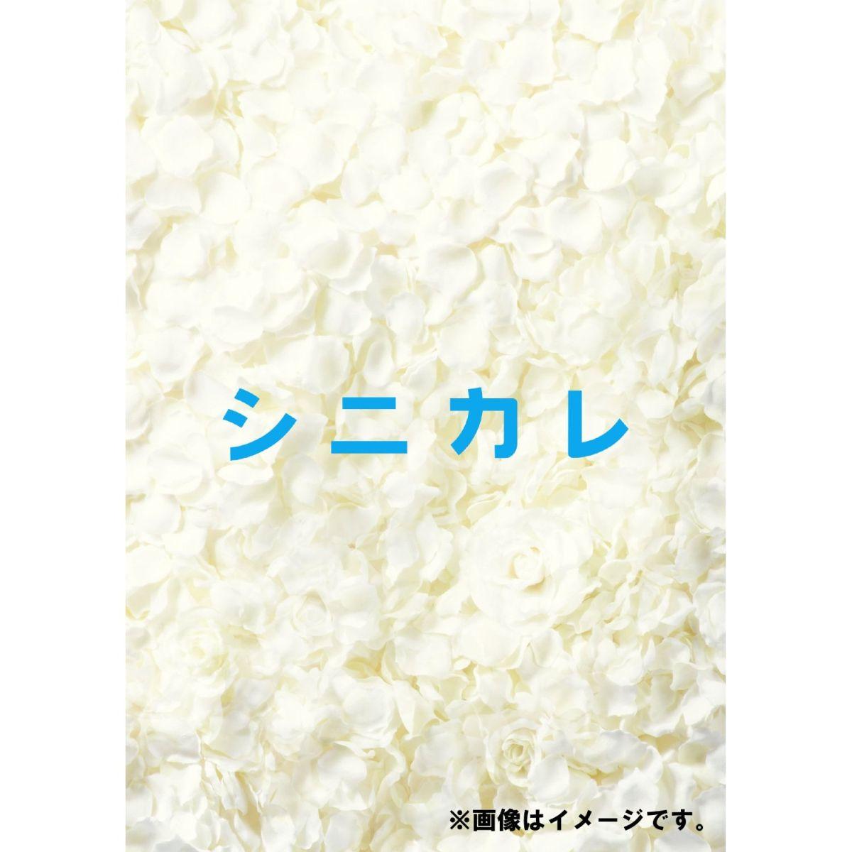 シニカレ完全版 ブルーレイBOX【Blu-ray】 [ 藤ヶ谷太輔 ]...:book:16307838