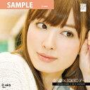 【送料無料】AKB48 小嶋 陽菜 [2012 TOKYOデートカレンダー]