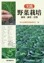 実践野菜栽培 葉菜・茎菜・豆類 [ 東京近郊野菜技術研究会 ]