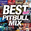 BEST FEAT. -PITBULL MIX-