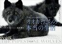 30年にわたる観察で明らかにされたオオカミたちの本当の生活 パイプストーン一家の興亡 [ ギュンター