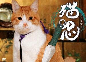 ドラマ「猫忍」DVD-BOX [ 大野拓朗 ]