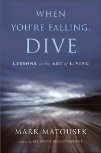 When_You��re_Falling��_Dive��_Les