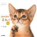カレンダー2019 ほのぼの子ねこ mini (ヤマケイカレンダー2019) [ 福田 豊文 ]