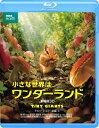 小さな世界はワンダーランド/劇場版3D【Blu-ray】 [ マーク・ブラウンロウ ]