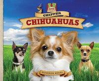 Chipper_Chihuahuas