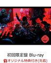 【楽天ブックス限定先着特典】欅坂46 LIVE at 東京ドーム 〜ARENA TOUR 2019 FINAL〜(初回生産限定盤)(ミニクリアファイル付き)【Blu-ray】 [ 欅坂46 ]