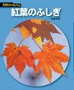 紅葉のふしぎ新装版 (科学のアルバム) [ 佐藤有恒 ]