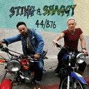 【輸入盤】44/876(デラックス) [ STING & SHAGGY ]