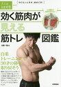効く筋肉が見える 筋トレ図鑑 〜自重トレーニングで30才の体を取り戻そう (大人の自由時間mini) [ 比嘉 一雄 ]