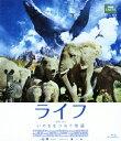 ライフ いのちをつなぐ物語 スタンダード・エディション【Blu-ray】 [ マイク・ガントン ]