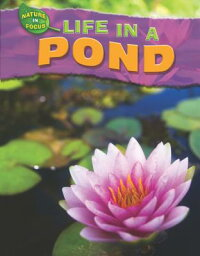 Life_in_a_Pond