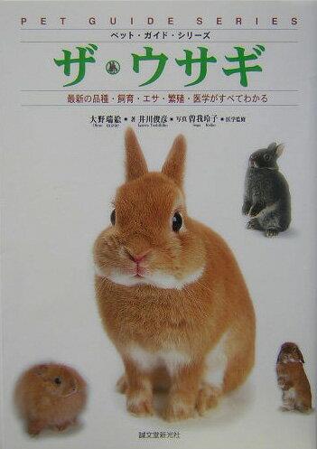 ウサギの画像 p1_17