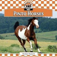Pinto_Horses