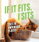 If It Fits, I Sits: Cats in Awkward Places