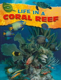 Life_in_a_Coral_Reef
