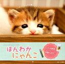 ましかく猫カレンダー...