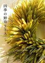 四季の野草リース [ 辻 典子 ]