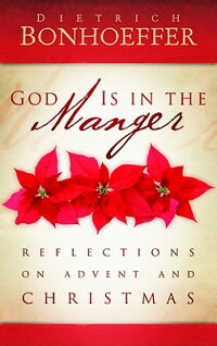 God_Is_in_the_Manger��_Reflecti