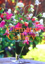 Clematis gallery