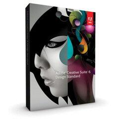 Design Standard CS6